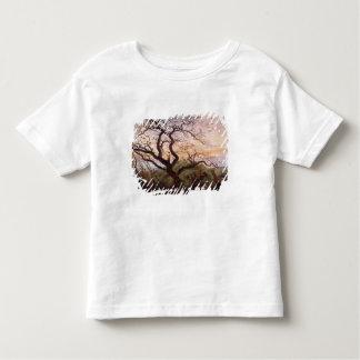 Träd av kråkor, 1822 tröja