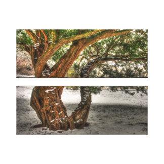 Träd Canvastryck