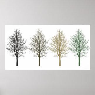 Träd fyra färger poster