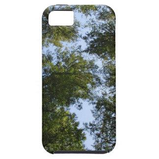 Träd i himmlen iPhone 5 fodraler