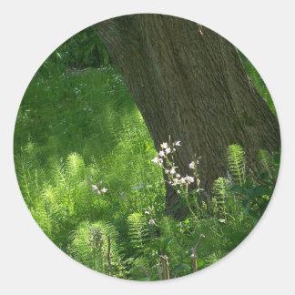 Träd med Ferns Runt Klistermärke