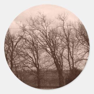 Träd på gryning på staket fodrar runt klistermärke