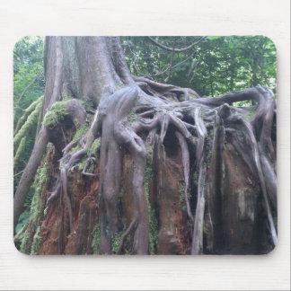Träd rotar musmatta