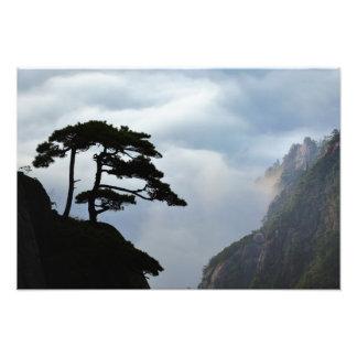 Träd silhouetted på soluppgången, gult berg, fototryck