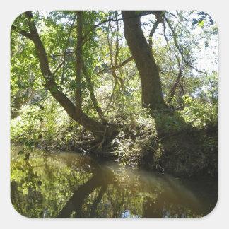 Träd som reflekterar i bäck fyrkantigt klistermärke