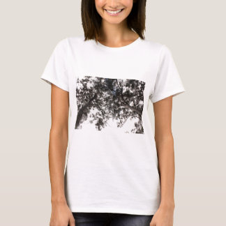 träd tee shirts