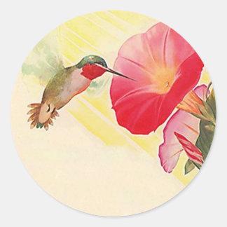 Trädgård för blommor för Hummingbird för Runt Klistermärke