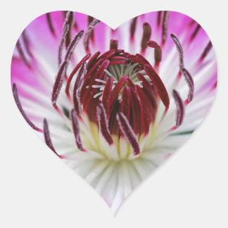 Trädgård för växt för Clematisblommablomma Hjärtformat Klistermärke