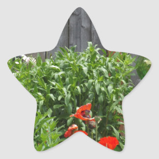 Trädgården blommar på staket stjärnformat klistermärke