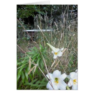 Trädgårds- bad hälsningskort