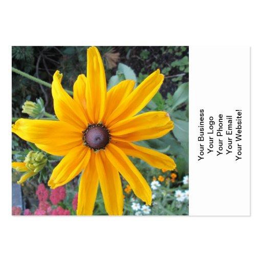 Trädgårds- daisyblomma visitkort mallar