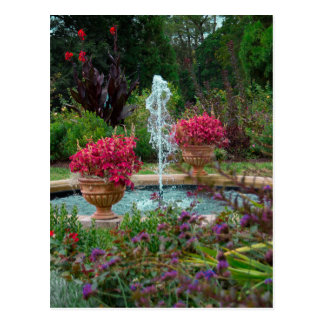 Trädgårds- fontän vykort