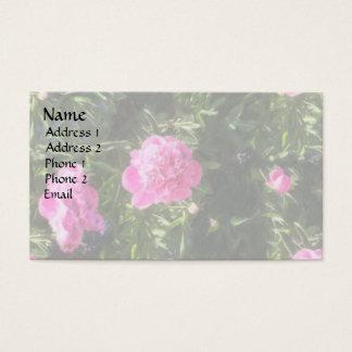 Trädgårds- sjal för nejlika visitkort