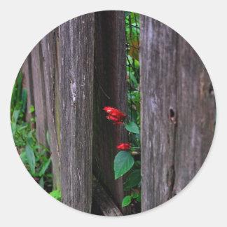 Trädgårds- staket runt klistermärke