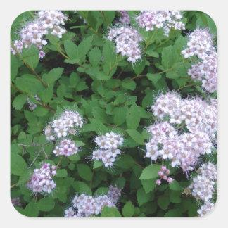 Trädgårds- växt fyrkantigt klistermärke