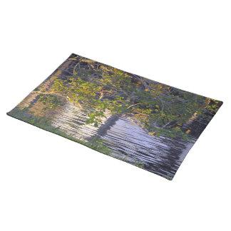 Trädgrenar, solljus, reflexion bordstablett