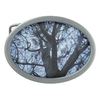 Trädsilhouetten fotograferar bältet spänner fast