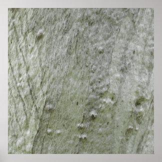 Trädskäll 3 print