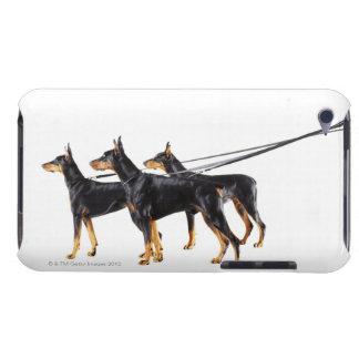 Tre Dobermans på koppel iPod Case-Mate Skydd