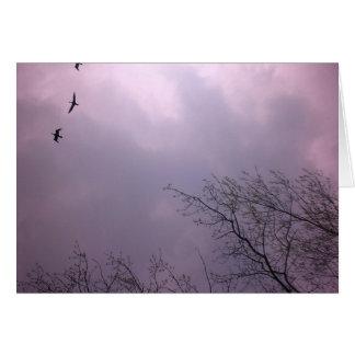 Tre fåglar flyger så kick hälsningskort