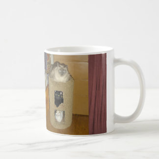 Tre katter kaffemugg