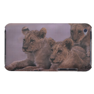 Tre lejona ungar iPod touch cases