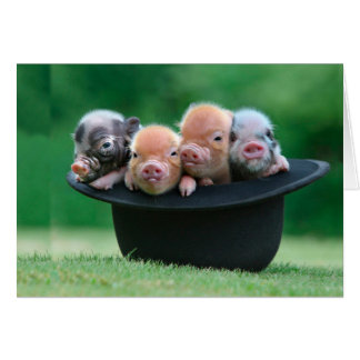 Tre lite grisar - tre grisar - grishatt OBS kort