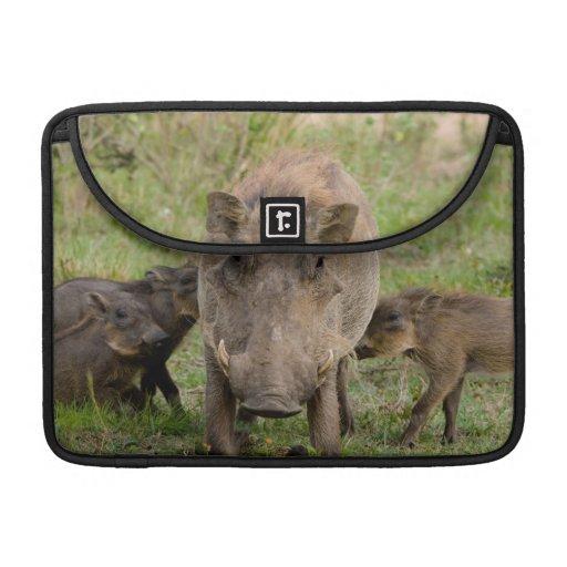 Tre Warthog Piglets diar på deras mor Sleeves För MacBooks