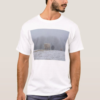 Trek DSCF0832 Tshirts