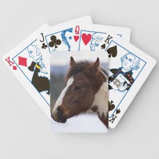 Tri-Färgad häst Spelkort