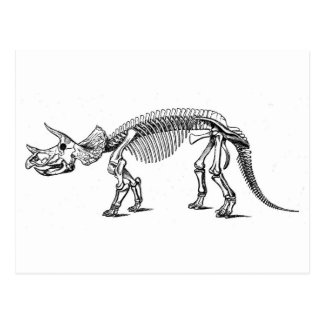 triceratops-2 vykort