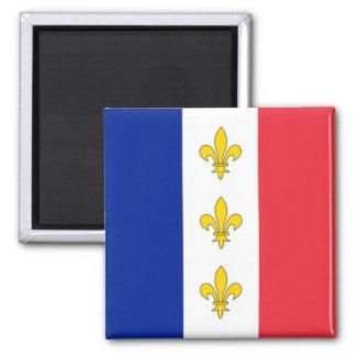 Tricolour frankrikemagnet - & Fleurs-de-Lys Magnet