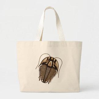 Trilobite Tygkassar