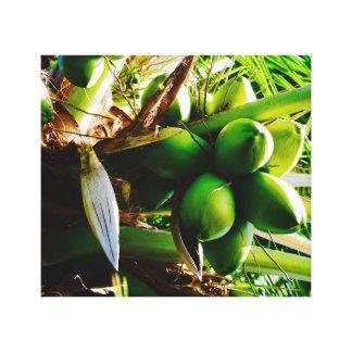 ~ Trinidad för konst för kokosnöt~-kanfas Canvastryck