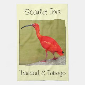 Trinidad och Tobago röda scharlakansröda Ibis Kökshandduk