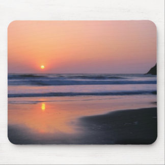 Trinidad statlig strand, Kalifornien. USA. Hav 2 Musmatta