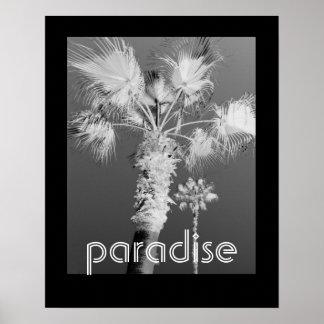 tropikernan poster svartvitt fotograferar