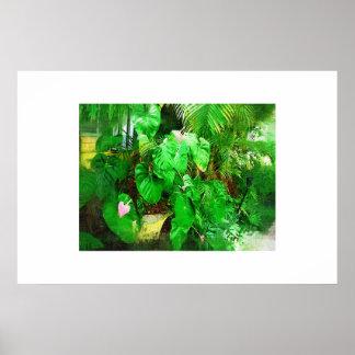 Tropisk Anthuriumoljemålningsamling Posters
