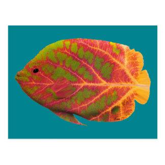 Tropisk fisk 1 för asp- löv vykort