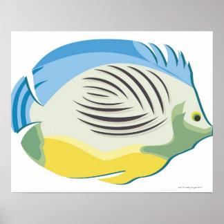 Tropisk fisk 2 poster