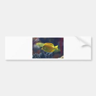 tropisk fisk bildekal