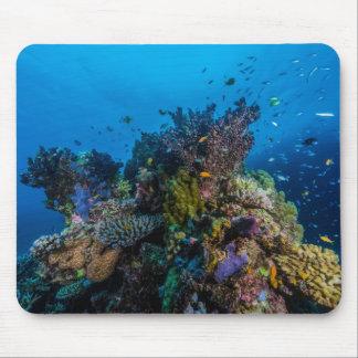 Tropisk fisk och korallrev Mousepad Musmatta