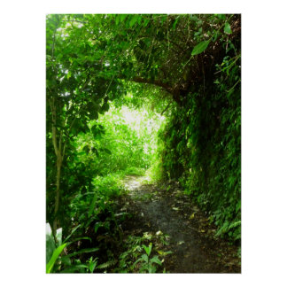 Tropisk fotvandra slinga poster