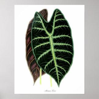 Tropisk grön konst för vägg för lövtryck #7 poster