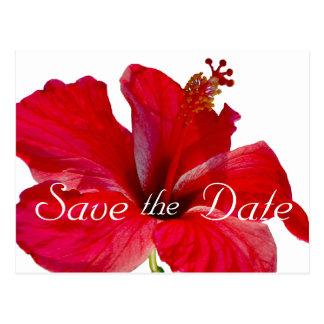 Tropisk hibiskusbröllop spara datum vykort