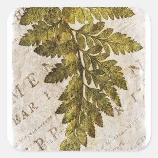 Tropisk mall för gröna Ferns för Fern botaniska Fyrkantigt Klistermärke