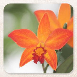 Tropisk Orchidpapperskustfartyg Underlägg Papper Kvadrat