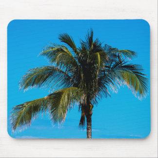 Tropisk palmträd musmatta