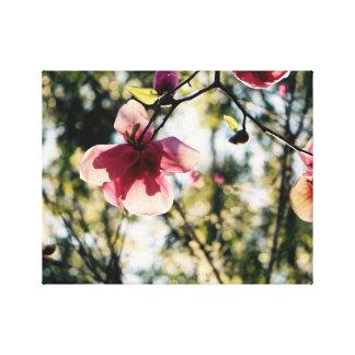 Tropisk rosa Magnolia - - kanfaskonst Canvastryck