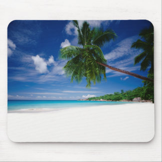 Tropisk strand | Seychellerna Musmatta